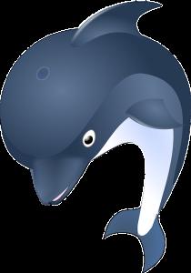 plaatje springende dolfijn