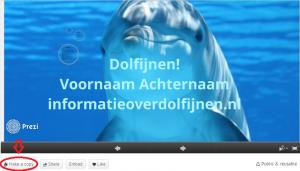 dolfijnenpresentatieprezi