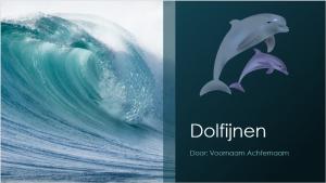 dolfijnenspreekbeurtpowerpoint-300x169